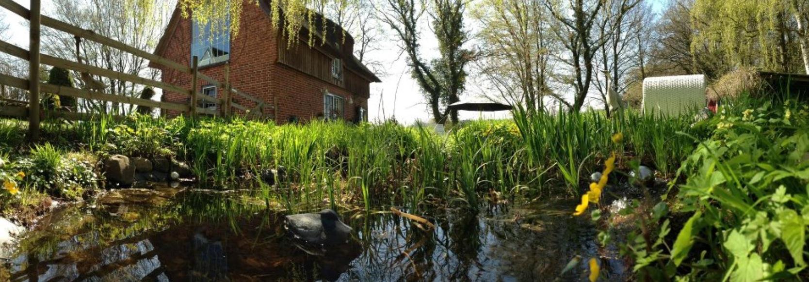 Teich mit Haus