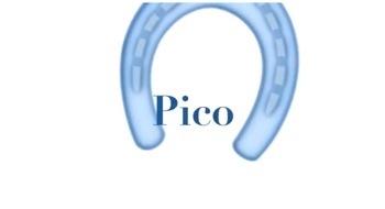 Der Pico